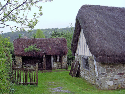 thatched house and shed